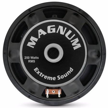 Woofer-Magnum-10-Polegadas-250W-RMS-4-e-8-Ohms-Bobina-Simples-connectparts--4-
