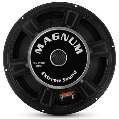 Woofer-Magnum-12-Polegadas-250W-RMS-4-e-8-Ohms-Bobina-Simples-connectparts--1-